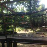 Travellers Camp 2016 zona pranzo